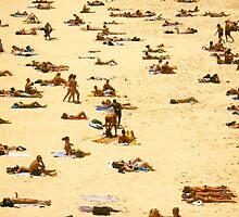 sunbathe bondi beach by hayleychard