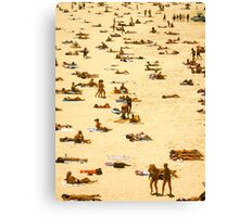 sunbathe bondi beach Canvas Print