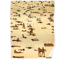 sunbathe bondi beach Poster