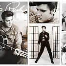 Elvis Presley ~ King of Rock and Roll by ©The Creative  Minds