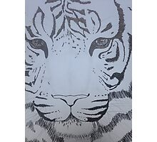 Ink pen tiger sketch Photographic Print