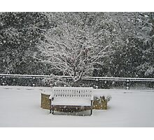 Lonely bench in snow Woking Surrey Photographic Print