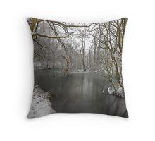 Snowy Dearne Throw Pillow