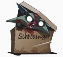 Schrödinger's Cat Solution Kids Clothes