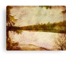 February at Parker Dam State Park Canvas Print