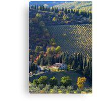 Tree Lined Hills - Tuscany, Italy Canvas Print