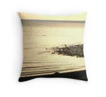 Seagull Fly Away Throw Pillow