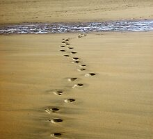 Footsteps on the sand by Ed Smith