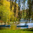 Summer Boats - Toronto Island by Ken  Yan