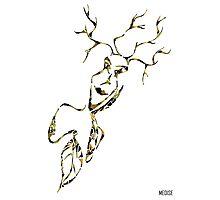 La fée des arbres   The Fairy Tree Photographic Print
