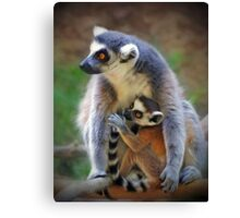 Mother and Baby Monkey Canvas Print