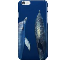 Friendly spotted dolphins iPhone Case/Skin