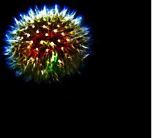 Dandelion Firework Photographic Print