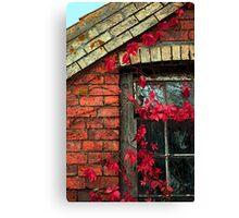 Window Creeper Canvas Print