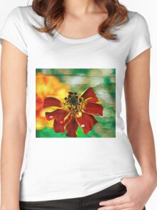 A fave marigold pic Women's Fitted Scoop T-Shirt