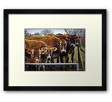 Now That I Have Your Undivided Attention.... Framed Print