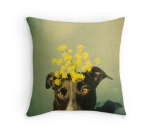 sunseeker Throw Pillow