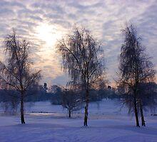 Three tree snow scene by James Hall