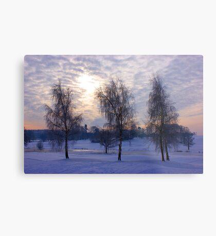 Three tree snow scene Metal Print