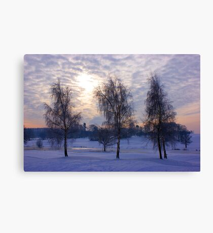 Three tree snow scene Canvas Print