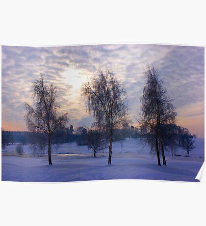 Three tree snow scene Poster