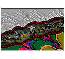 Lichen Crevasse Photographic Print