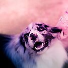 princess puppins by laureliz
