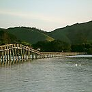 Whananaki bridge, Northland, New Zealand. by Roy  Massicks