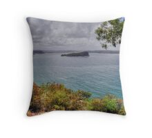 Lion Island Throw Pillow