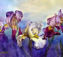 Bearded Irises by Joe Cartwright