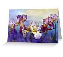 Bearded Irises Greeting Card