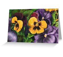 Pansies Pencil Sketch Greeting Card