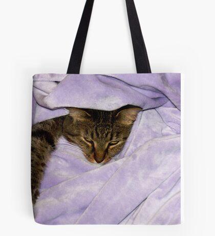 Tigger in Purple Tote Bag