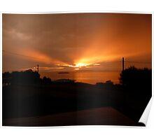 Primrose Sunset Poster