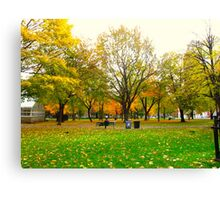 Laidback days of Autumn Canvas Print