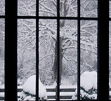 Through Winter's Window by Hank Eder