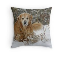 In His Element! Throw Pillow