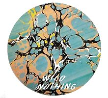 Wild Nothing by jessieh29