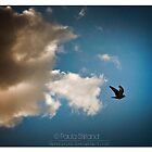 Bring The Clouds by Gozza