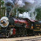 Texas State Railroad by Susan Russell
