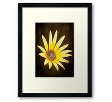 Lemon Yellow ©  Framed Print