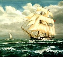 Darwin's Ship, HMS Beagle by Woodie