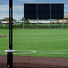 Baseball Field by Joe Mortelliti