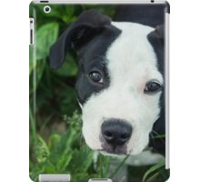 Smokin' Joe Pit iPad Case/Skin