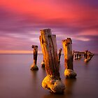 Old Pylons - Clifton Springs by Hans Kawitzki
