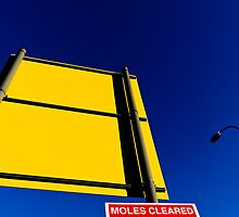 Moles cleared by Mark  Coward