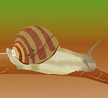 Snail on a branch by Linda Thibault