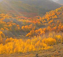 Godbeams and Aspen on Steens Mountain by Dave Anderson