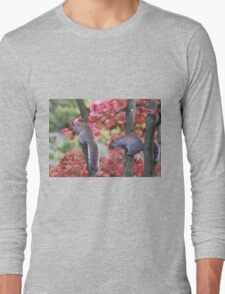 Playful squirrels Long Sleeve T-Shirt