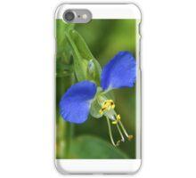 Am I blue?  iPhone Case/Skin
